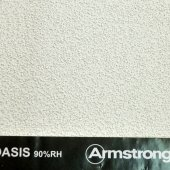 armstrong-oasis