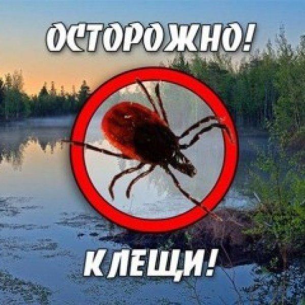 Обробка ділянок від кліщів та комарів Акарицидна обробка територ