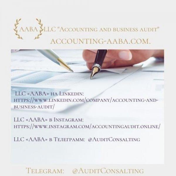 Бухгалтерский учет и бизнес-аудит