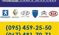 sto-avtopan--327c-1424377371675010-2-big