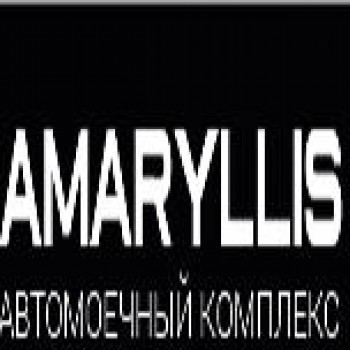 Амариллис автомоечный комплекс